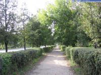 Тротуар по улице Ленина в сторону Камчатки