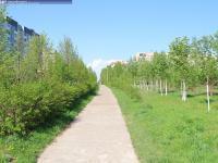 Пешеходная дорожка на улице Первомайской