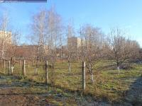 Яблоневый сад на улице 10-й Пятилетки