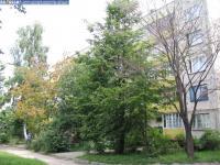 Дом 28
